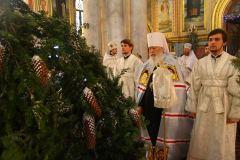Ильинский монастырь 09,01,2017