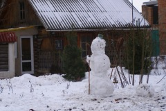 Снег чудесный